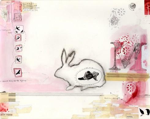 Boone_Bunny2